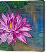 Lily In The Water Canvas Print