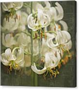 Lily My Love Canvas Print