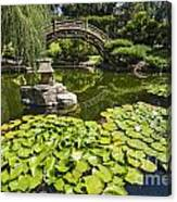 Lily Pad Garden - Japanese Garden At The Huntington Library. Canvas Print