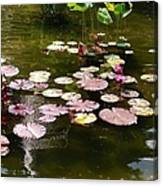 Lily Pads In The Fountain Canvas Print