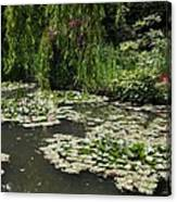 Lily Pads Monets Garden Canvas Print