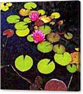 Lily Pads With Pink Flowers - Square Canvas Print