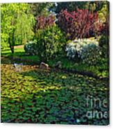 Lily Pond And Colorful Gardens Canvas Print