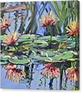 Lily Pond Reflections Canvas Print