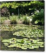 Lily Pond View Monets Garden Canvas Print