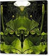 Lily Symmetry  Canvas Print