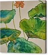 Lilypads 2 Canvas Print