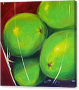 Limes In A Vase Canvas Print