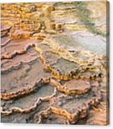 Limestone Terraces Yellowstone National Park Canvas Print