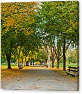 Lincoln Park In Fall Canvas Print