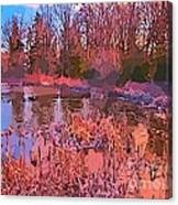 Linear Abstraction Of Pond Canvas Print
