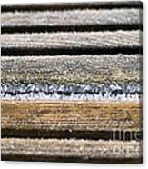 Lines Of Ice Canvas Print