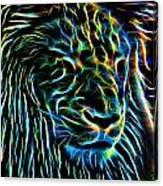 Lion - 1 Canvas Print