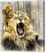 Lion 15 Canvas Print