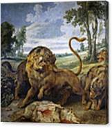Lion And Three Wolves Canvas Print
