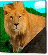 Lion Prowling Canvas Print