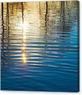 Liquid Gold Canvas Print