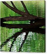 Liquid Reflection Canvas Print