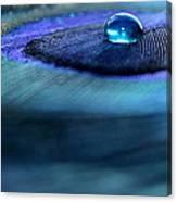 Liquid Saphire Canvas Print