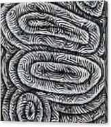 Liquid Waves Canvas Print
