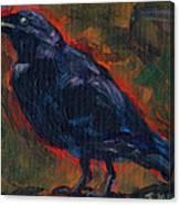 Lisa's Blackbird Canvas Print