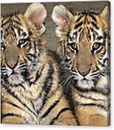 Little Angels Bengal Tigers Endangered Wildlife Rescue Canvas Print