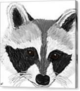 Little Bandit - Raccoon Canvas Print