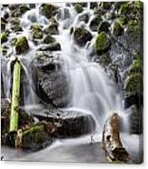 Little Cascade In Marlay Park Dublin Canvas Print