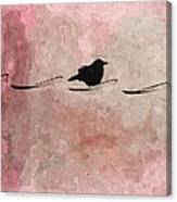Little Crow In The Pink Canvas Print