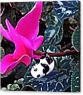 Little Glass Pandas 78 Canvas Print