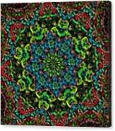 Little Green Men Kaleidoscope Canvas Print