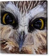 Little Owls Canvas Print