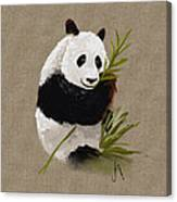 Little Panda Canvas Print