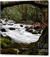 Little Pigeon River In The Smokies Canvas Print