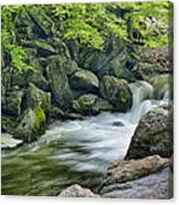 Little River Scenery E226 Canvas Print