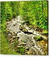 Little River - Smoky Mountains Canvas Print