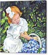 Sophies Hydrangeas Canvas Print