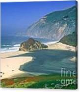 Little Sur River In Big Sur Canvas Print