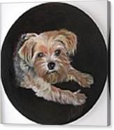 Little Susie Canvas Print
