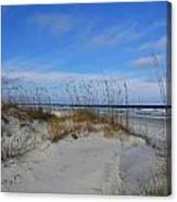 Little Talbot Sand Dunes Canvas Print