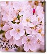Live Life In Bloom Canvas Print