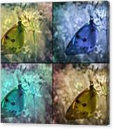 Lives Of A Butterfly Canvas Print