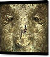 Lizard Head Canvas Print
