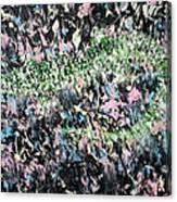 Lizard In The Grass  Canvas Print