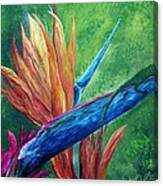 Lizard On Bird Of Paradise Canvas Print