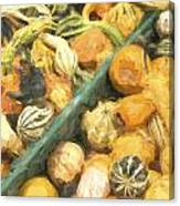 Local Glazed Gourds Painterly Effect Canvas Print