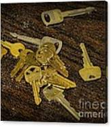 Locksmith - Rejected Keys Canvas Print