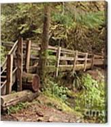 Log Bridge In The Rainforest Canvas Print