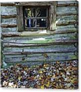 Log Cabin Window And Fall Leaves Canvas Print