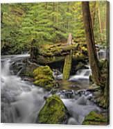 Log Jam Canvas Print